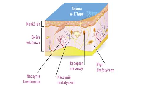 Poprawa mikrokrążenia